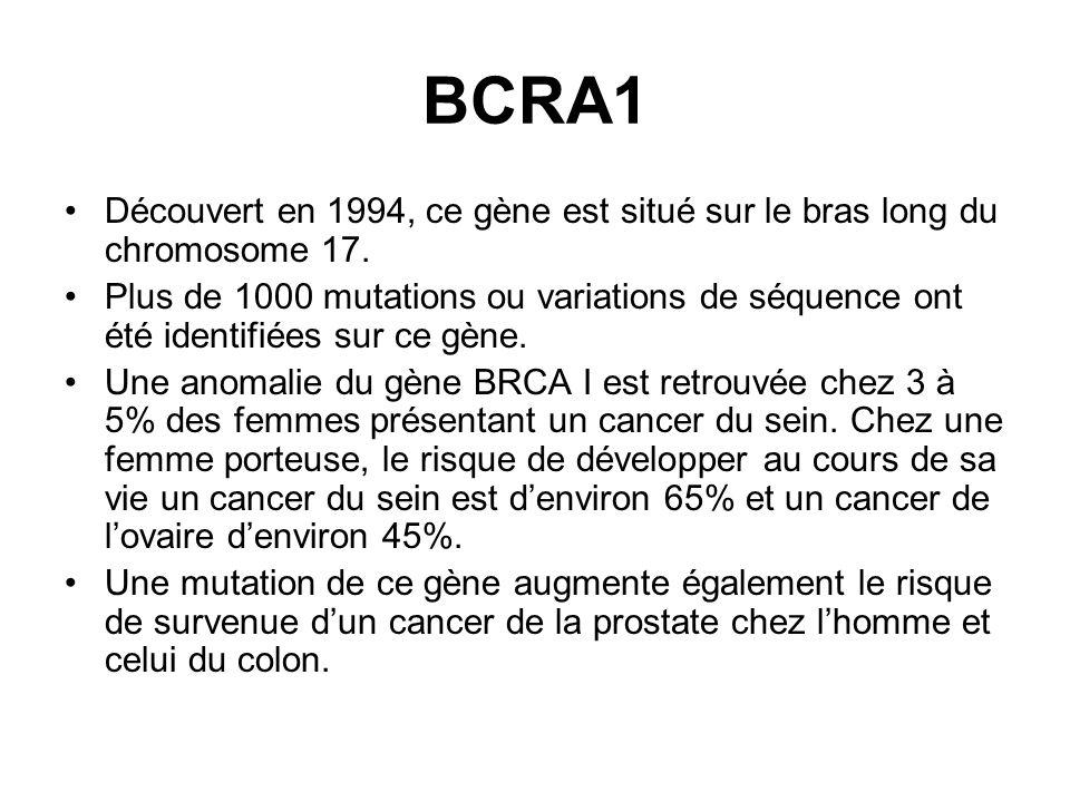 BCRA1 Découvert en 1994, ce gène est situé sur le bras long du chromosome 17. Plus de 1000 mutations ou variations de séquence ont été identifiées sur