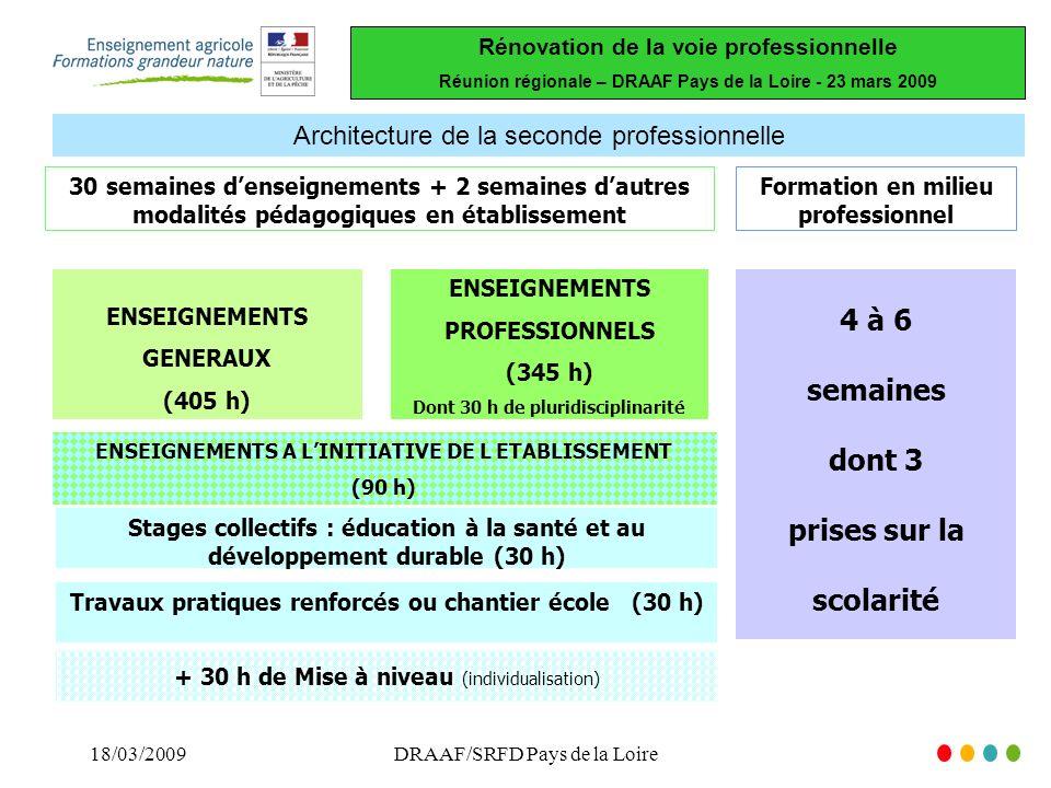 Rénovation de la voie professionnelle Réunion régionale – DRAAF Pays de la Loire - 23 mars 2009 18/03/2009DRAAF/SRFD Pays de la Loire Architecture de