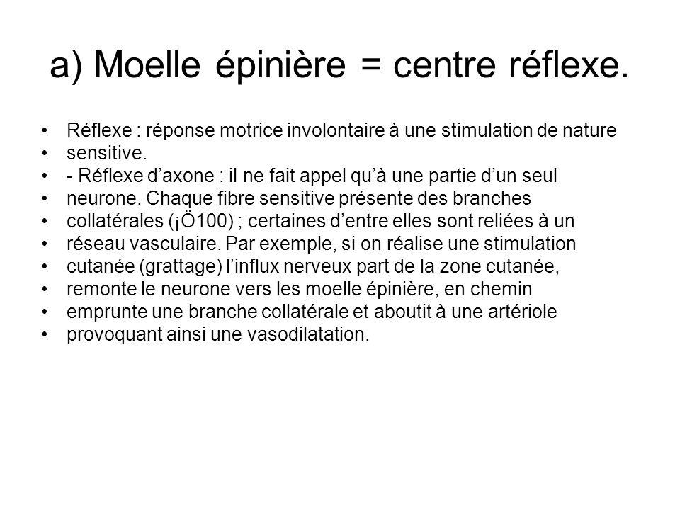 a) Moelle épinière = centre réflexe. Réflexe : réponse motrice involontaire à une stimulation de nature sensitive. - Réflexe daxone : il ne fait appel