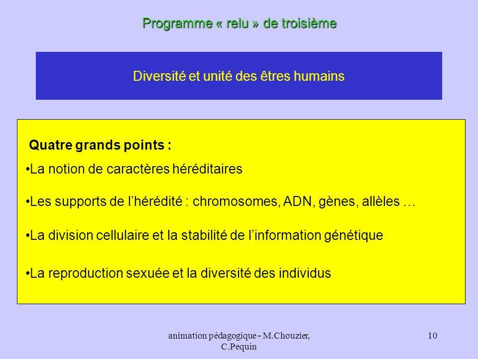 animation pédagogique - M.Chouzier, C.Pequin 10 Diversité et unité des êtres humains Programme « relu » de troisième Quatre grands points : La notion