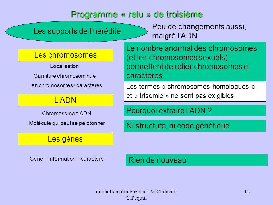 animation pédagogique - M.Chouzier, C.Pequin 12 Programme « relu » de troisième Les supports de lhérédité Peu de changements aussi, malgré lADN Les ch