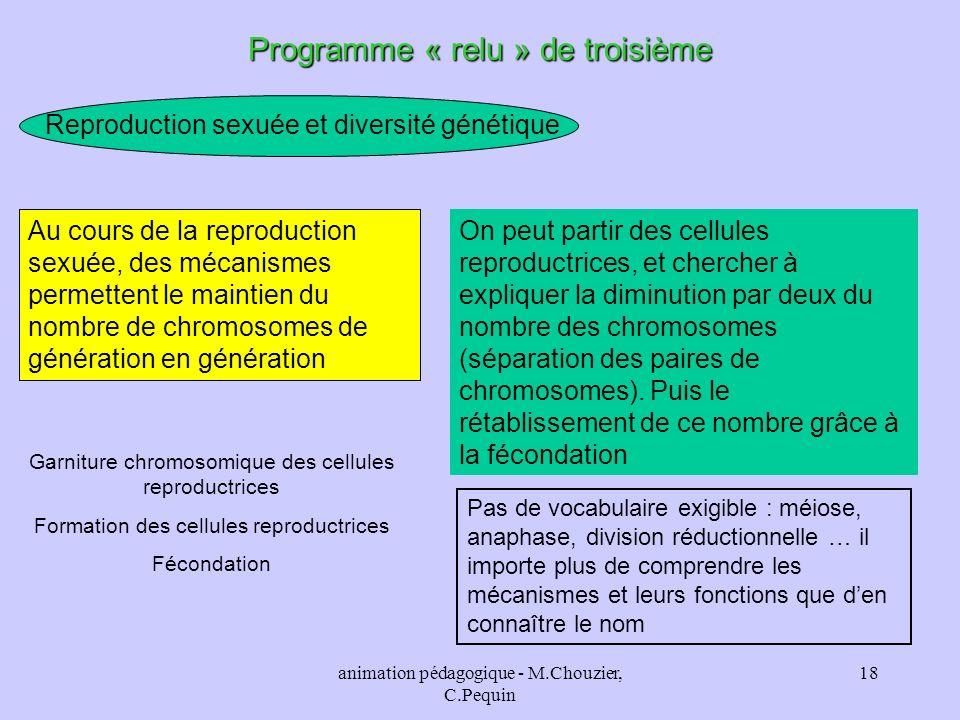 animation pédagogique - M.Chouzier, C.Pequin 18 Programme « relu » de troisième Reproduction sexuée et diversité génétique Au cours de la reproduction