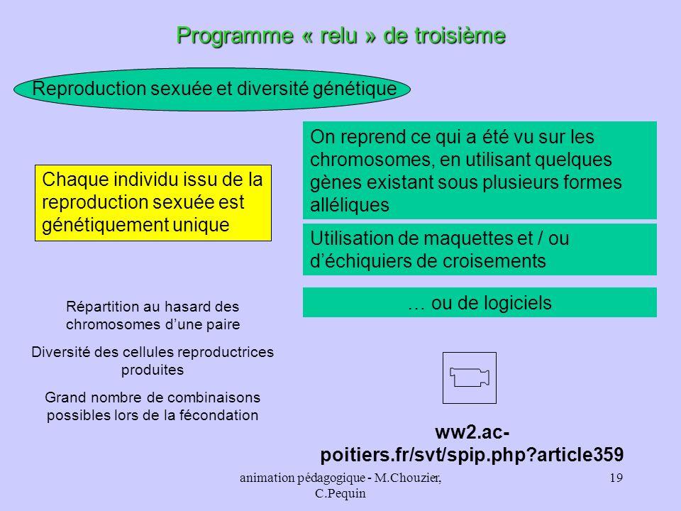 animation pédagogique - M.Chouzier, C.Pequin 19 Programme « relu » de troisième Reproduction sexuée et diversité génétique Chaque individu issu de la
