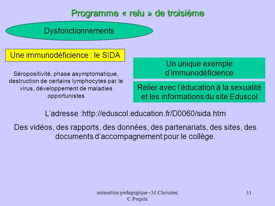 animation pédagogique - M.Chouzier, C.Pequin 31 Dysfonctionnements Programme « relu » de troisième Un unique exemple dimmunodéficience Une immunodéfic