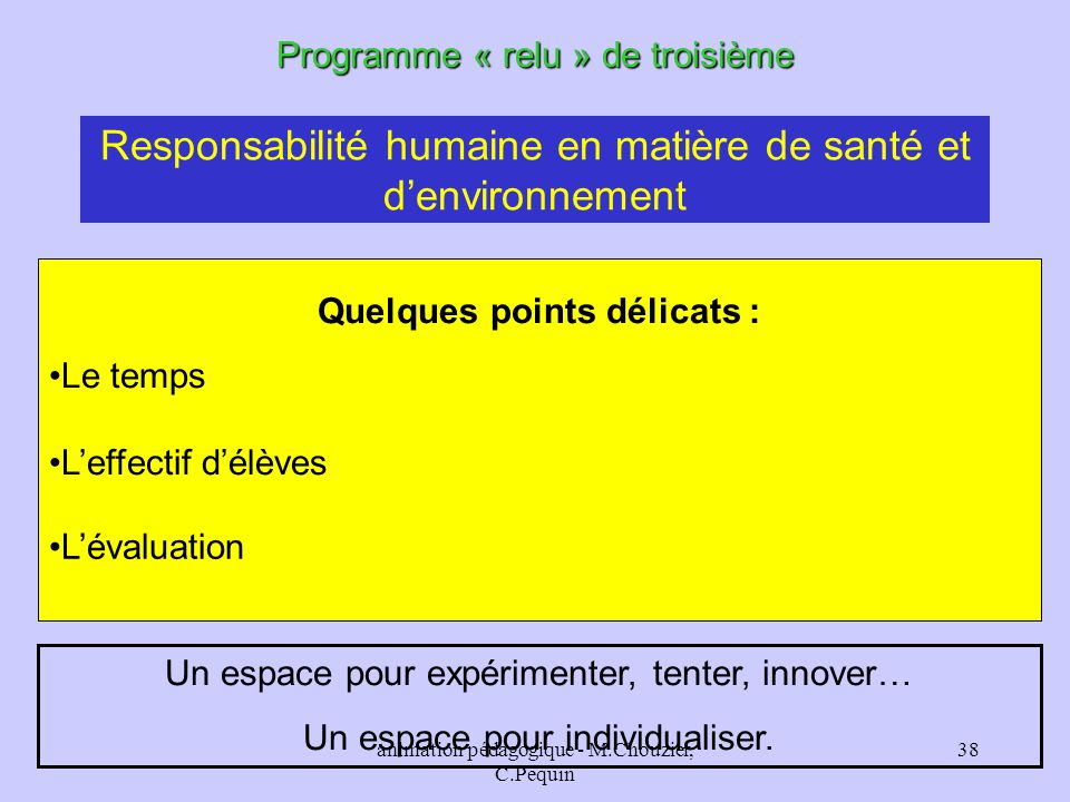 animation pédagogique - M.Chouzier, C.Pequin 38 Responsabilité humaine en matière de santé et denvironnement Programme « relu » de troisième Quelques