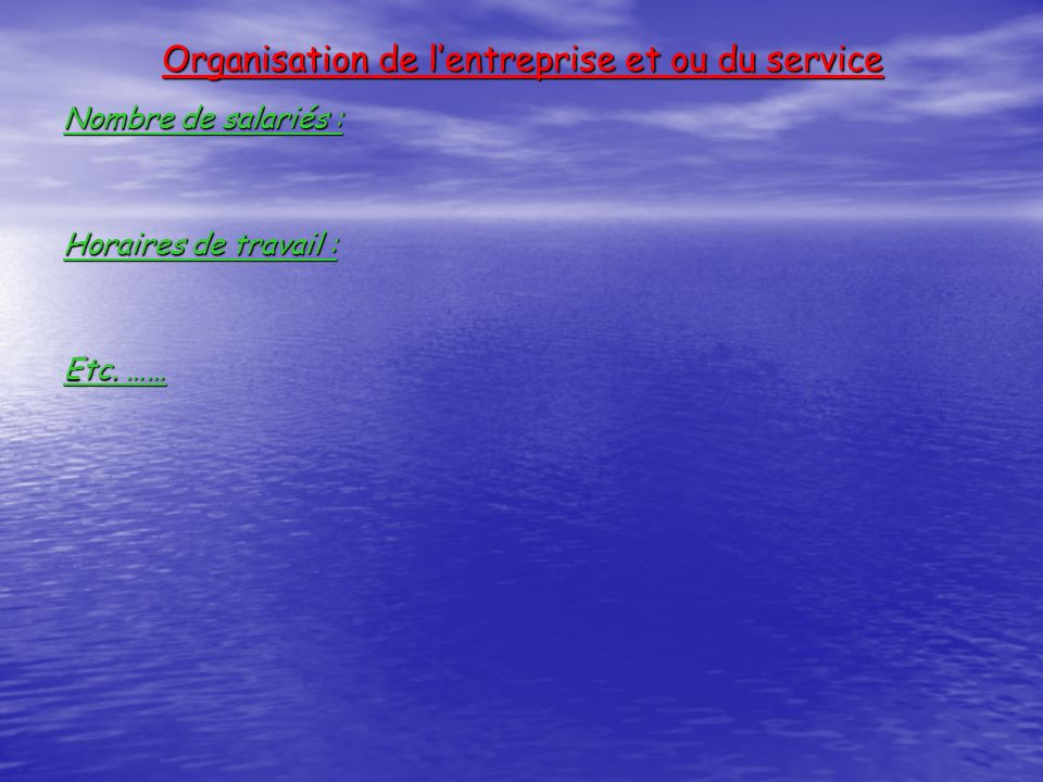 Organisation de lentreprise et ou du service Nombre de salariés : Horaires de travail : Etc. ……