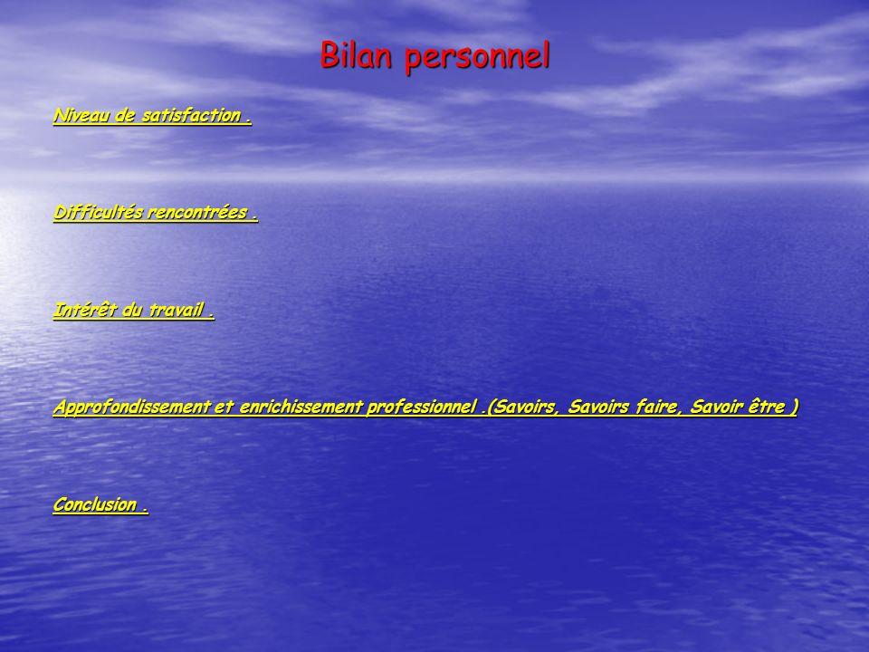 Bilan personnel Niveau de satisfaction. Difficultés rencontrées. Intérêt du travail. Approfondissement et enrichissement professionnel.(Savoirs, Savoi