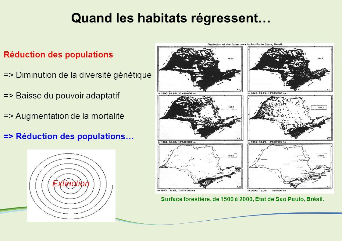 Surface forestière, de 1500 à 2000, État de Sao Paulo, Brésil. Extinction Réduction des populations => Diminution de la diversité génétique => Baisse