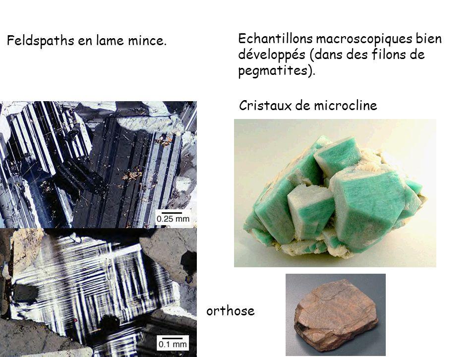 Cristaux de microcline Feldspaths en lame mince. Echantillons macroscopiques bien développés (dans des filons de pegmatites). orthose