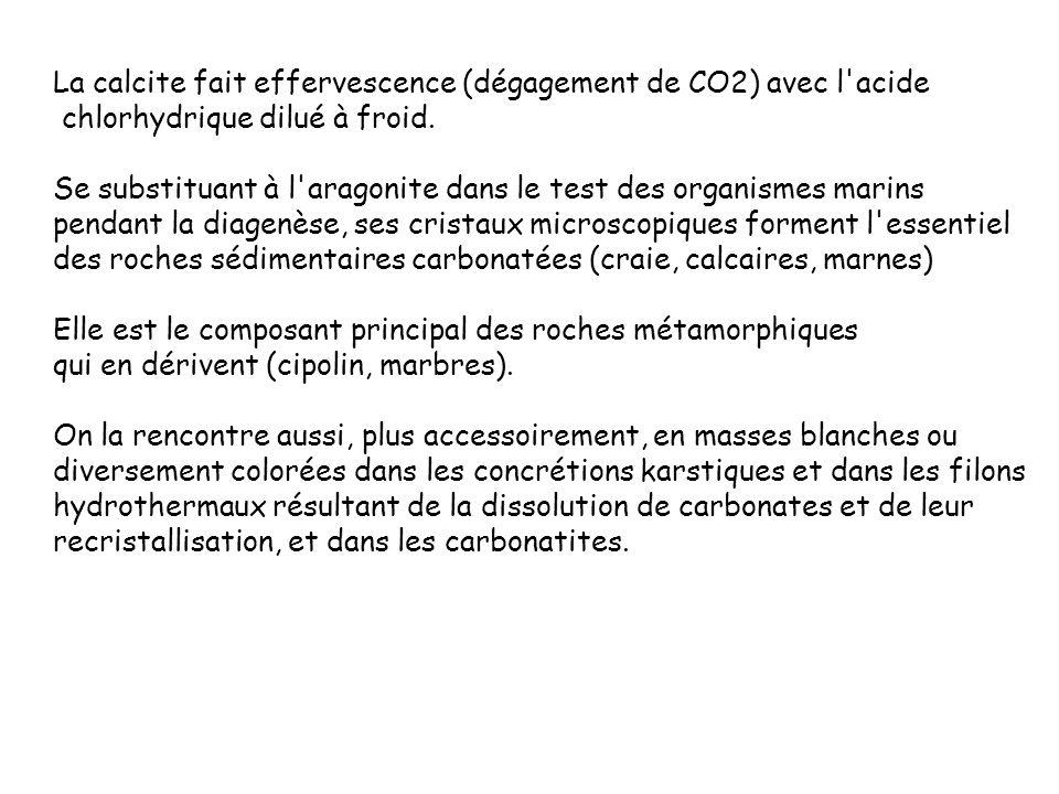 La calcite fait effervescence (dégagement de CO2) avec l'acide chlorhydrique dilué à froid. Se substituant à l'aragonite dans le test des organismes m
