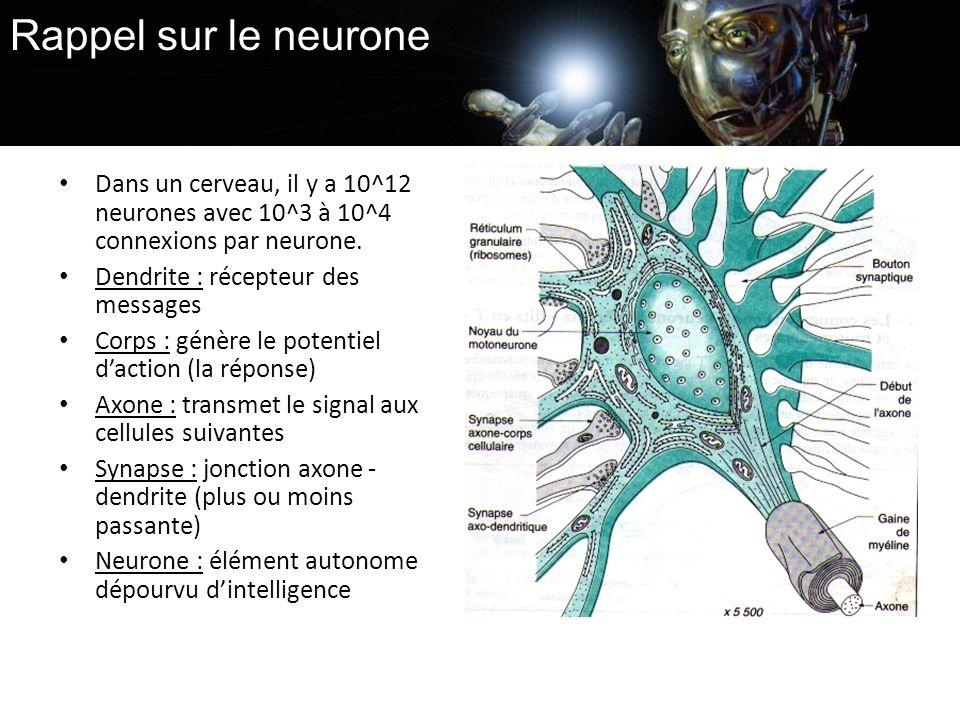 Rappel sur le neurone Dans un cerveau, il y a 10^12 neurones avec 10^3 à 10^4 connexions par neurone.