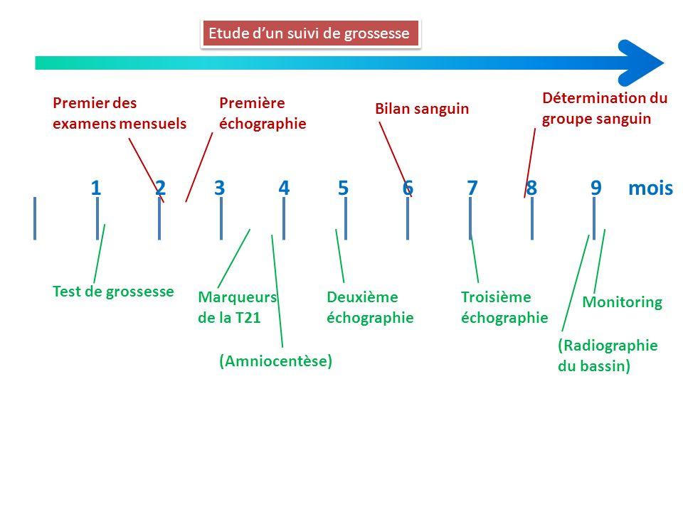 Etude dun suivi de grossesse Test de grossesse Premier des examens mensuels Première échographie Bilan sanguin Détermination du groupe sanguin Marqueu