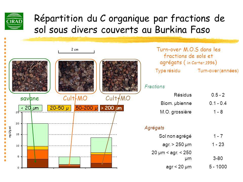 Répartition du C organique par fractions de sol sous divers couverts au Burkina Faso < 20 µm20-50 µ50-200 µ> 200 µm savaneCult-MOCult+MO Turn-over M.O