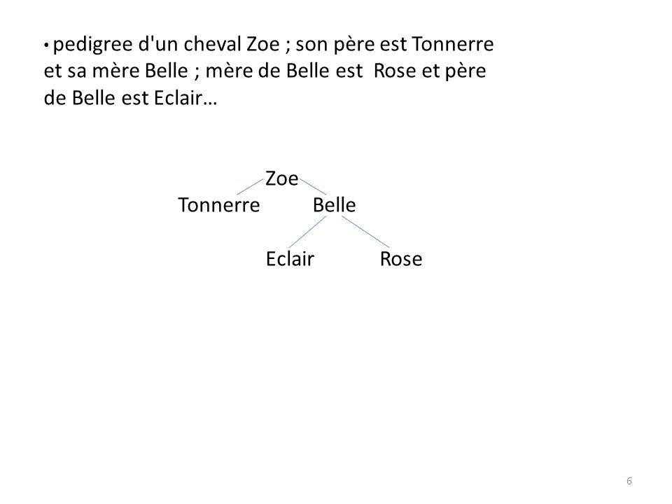 pedigree d'un cheval Zoe ; son père est Tonnerre et sa mère Belle ; mère de Belle est Rose et père de Belle est Eclair… Zoe TonnerreBelle EclairRose 6