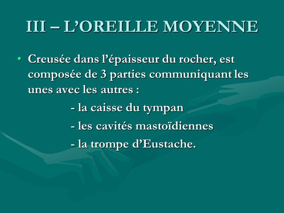 III – LOREILLE MOYENNE Creusée dans lépaisseur du rocher, est composée de 3 parties communiquant les unes avec les autres :Creusée dans lépaisseur du