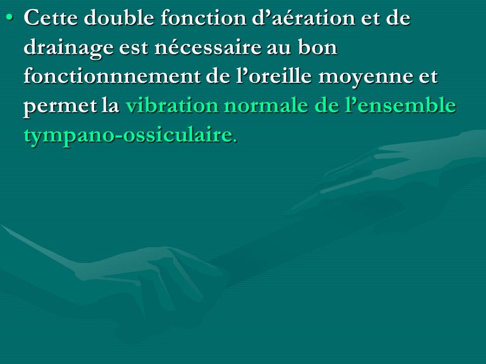 Cette double fonction daération et de drainage est nécessaire au bon fonctionnnement de loreille moyenne et permet la vibration normale de lensemble t