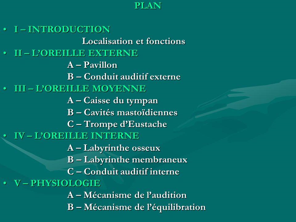 PLAN I – INTRODUCTIONI – INTRODUCTION Localisation et fonctions Localisation et fonctions II – LOREILLE EXTERNEII – LOREILLE EXTERNE A – Pavillon A –