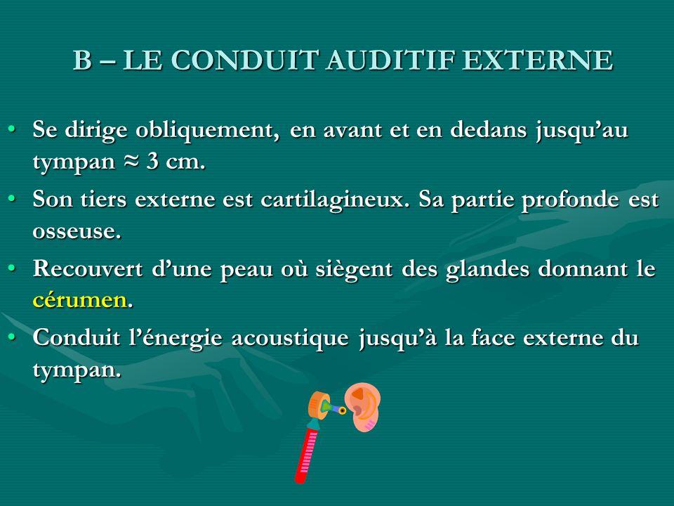 B – LE CONDUIT AUDITIF EXTERNE B – LE CONDUIT AUDITIF EXTERNE Se dirige obliquement, en avant et en dedans jusquau tympan 3 cm.Se dirige obliquement,