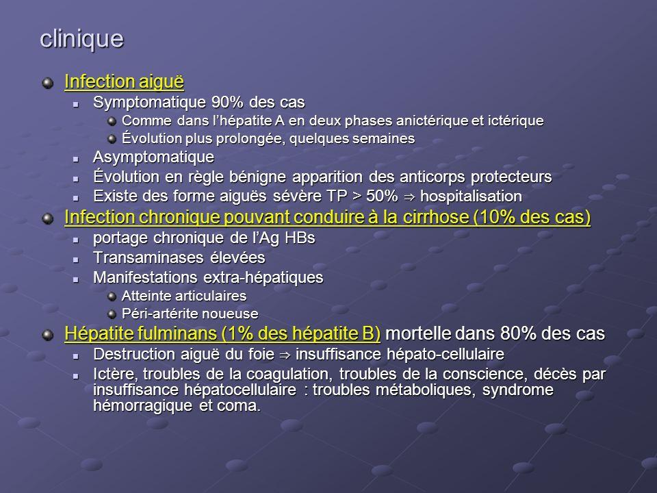 clinique Infection aiguë Symptomatique 90% des cas Symptomatique 90% des cas Comme dans lhépatite A en deux phases anictérique et ictérique Évolution