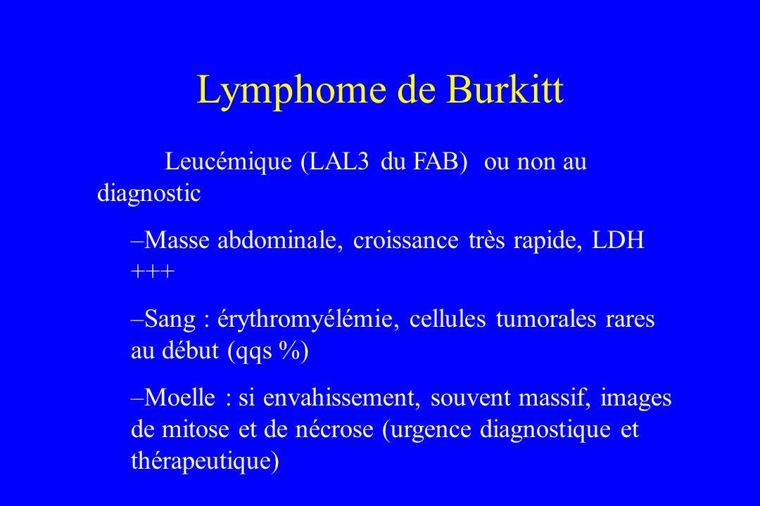 Leucémique (LAL3 du FAB) ou non au diagnostic –Masse abdominale, croissance très rapide, LDH +++ –Sang : érythromyélémie, cellules tumorales rares au