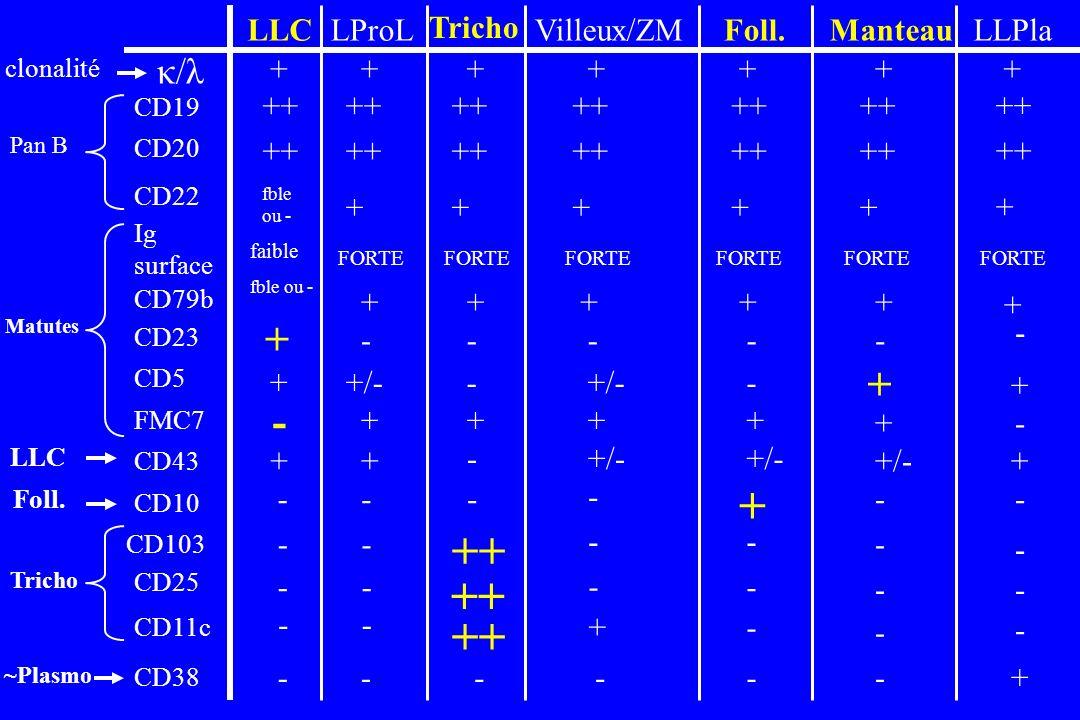 LLCLProL Tricho Villeux/ZMFoll.ManteauLLPla ++ +++++++ + + + - - - - +/-- - + - - - - - - - - - + - - - - - - - fble ou - + + - faible fble ou - ++++