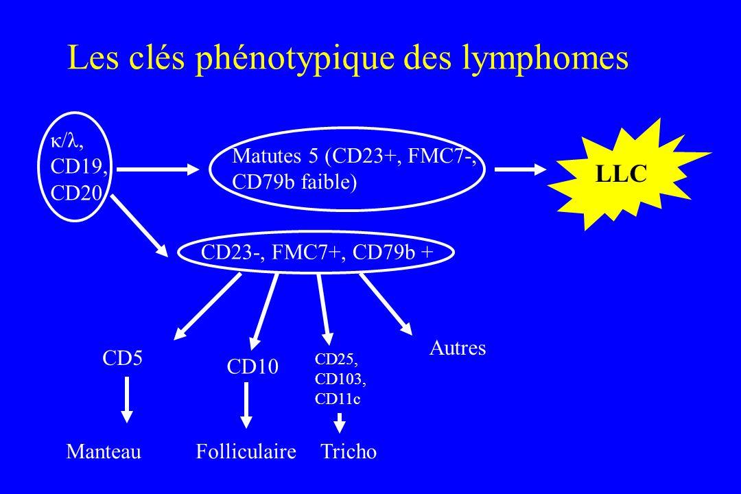 Les clés phénotypique des lymphomes CD5 Manteau CD10 Folliculaire CD25, CD103, CD11c Tricho Autres κ/λ, CD19, CD20 Matutes 5 (CD23+, FMC7-, CD79b faib