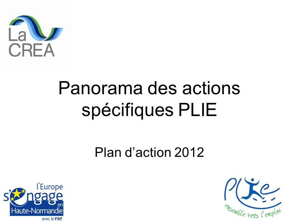 Panorama des actions spécifiques PLIE Plan daction 2012