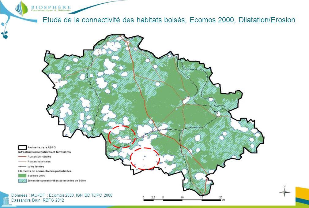 Etude de la connectivité des habitats boisés, Ecomos 2000, Dilatation/Erosion Données : IAU-IDF : Ecomos 2000, IGN BD TOPO 2008 Cassandre Brun, RBFG 2
