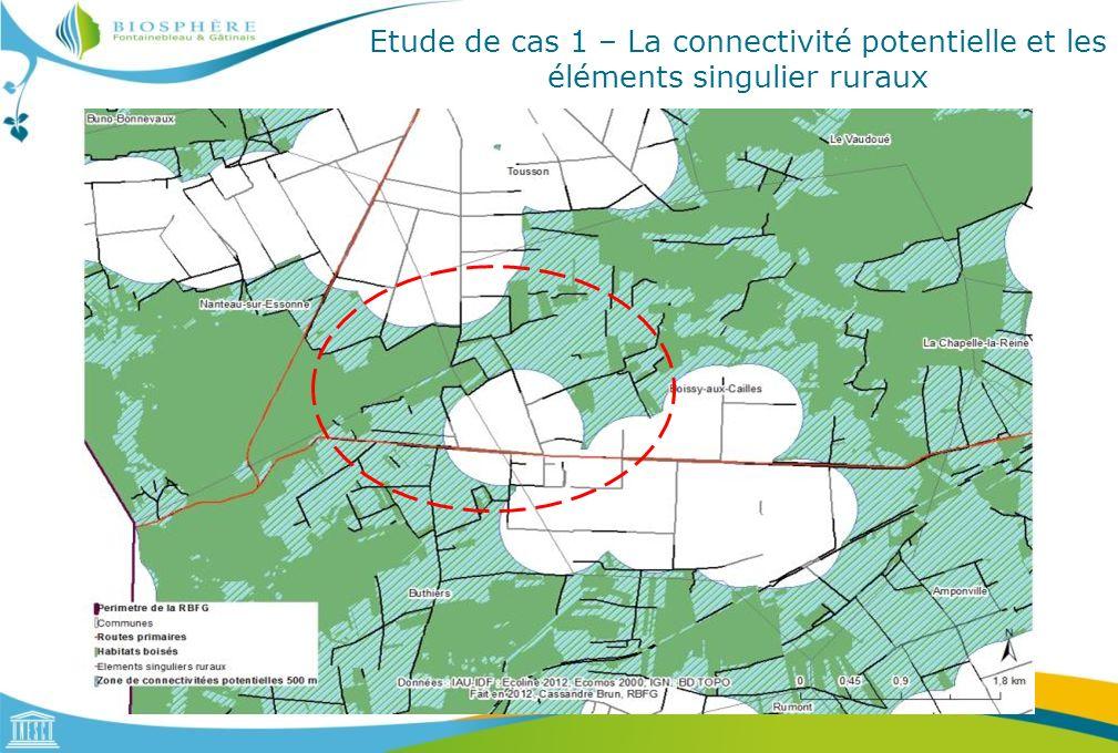 Etude de cas 1 – La connectivité potentielle et les éléments singulier ruraux