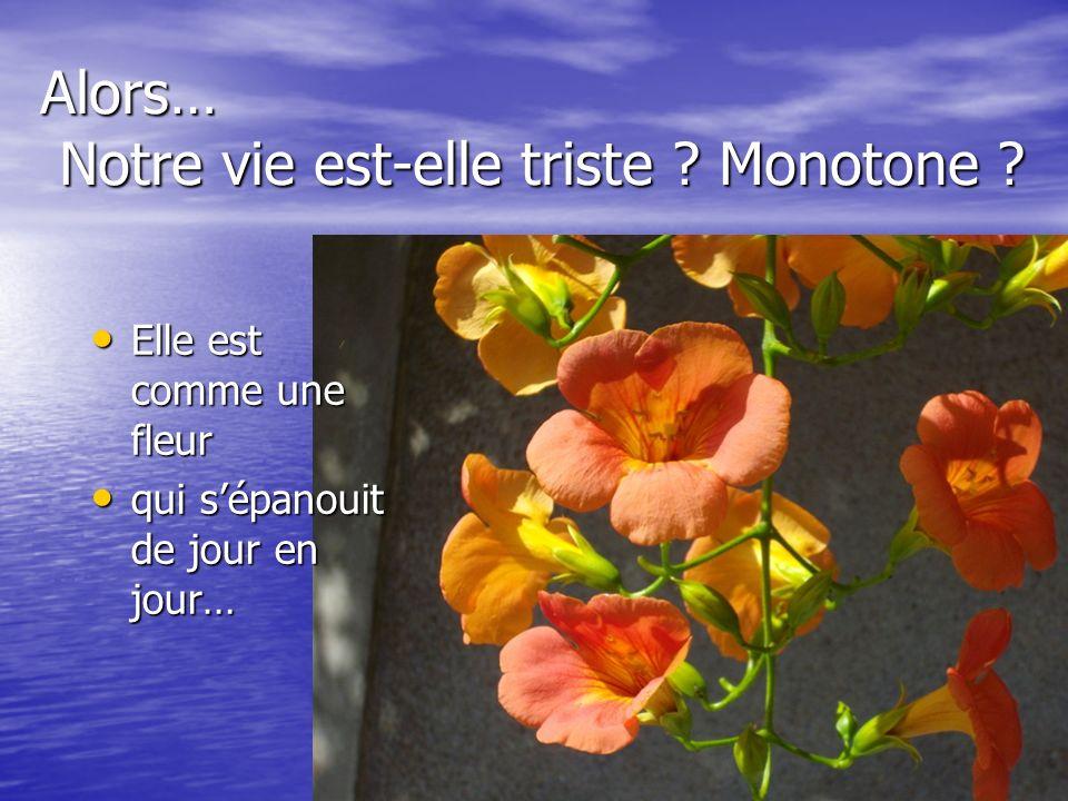 Alors… Notre vie est-elle triste ? Monotone ? Elle est comme une fleur Elle est comme une fleur qui sépanouit de jour en jour… qui sépanouit de jour e