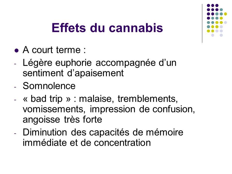 Effets du cannabis A court terme : - Légère euphorie accompagnée dun sentiment dapaisement - Somnolence - « bad trip » : malaise, tremblements, vomiss
