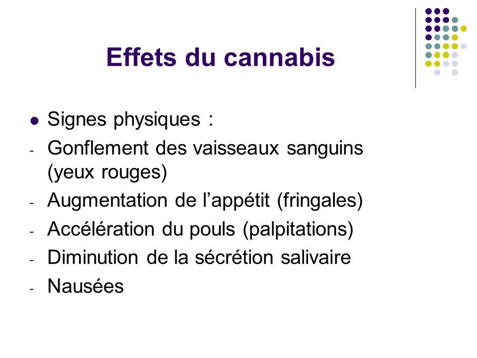 Effets du cannabis Signes physiques : - Gonflement des vaisseaux sanguins (yeux rouges) - Augmentation de lappétit (fringales) - Accélération du pouls