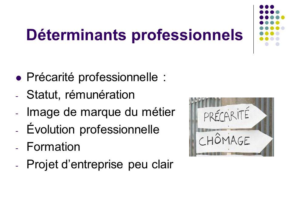 Déterminants professionnels Précarité professionnelle : - Statut, rémunération - Image de marque du métier - Évolution professionnelle - Formation - P