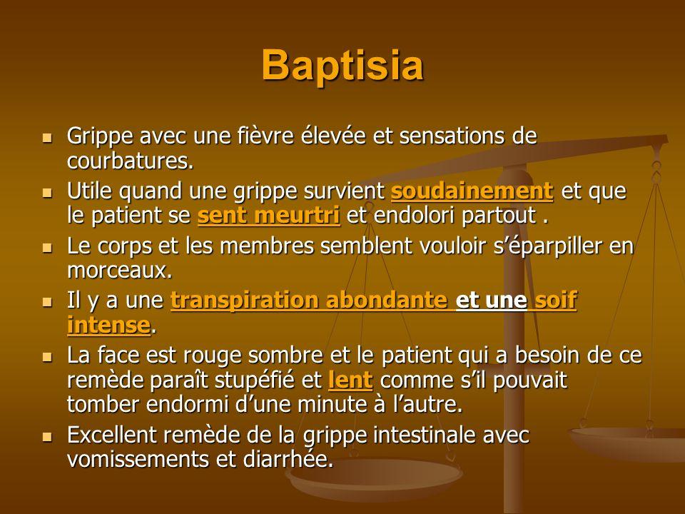 Baptisia Grippe avec une fièvre élevée et sensations de courbatures. Grippe avec une fièvre élevée et sensations de courbatures. Utile quand une gripp