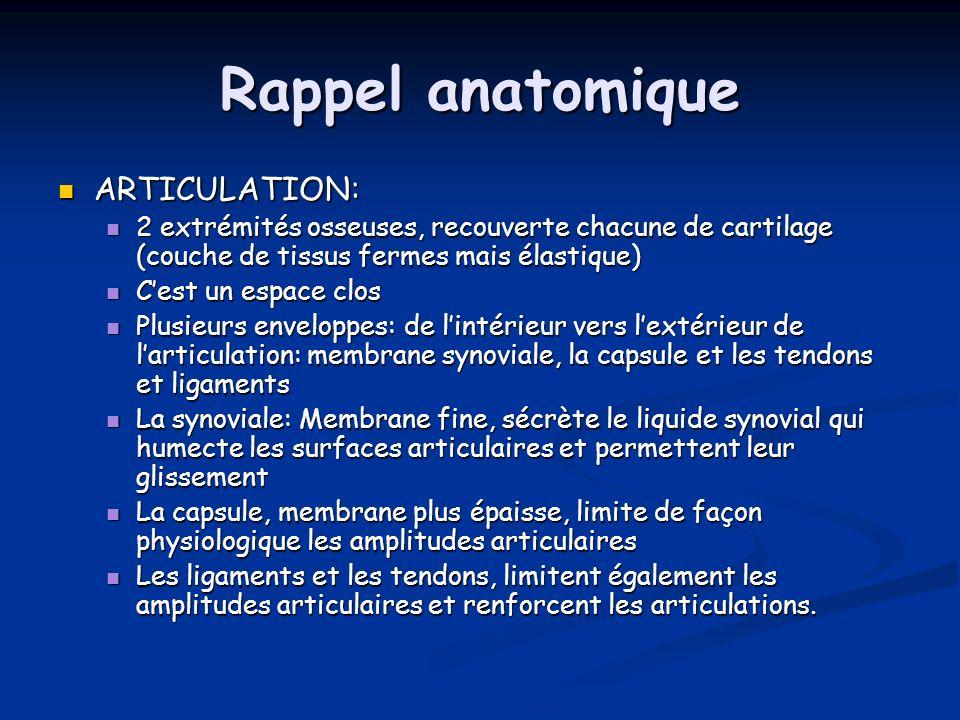 Rappel anatomique ARTICULATION: ARTICULATION: 2 extrémités osseuses, recouverte chacune de cartilage (couche de tissus fermes mais élastique) 2 extrém
