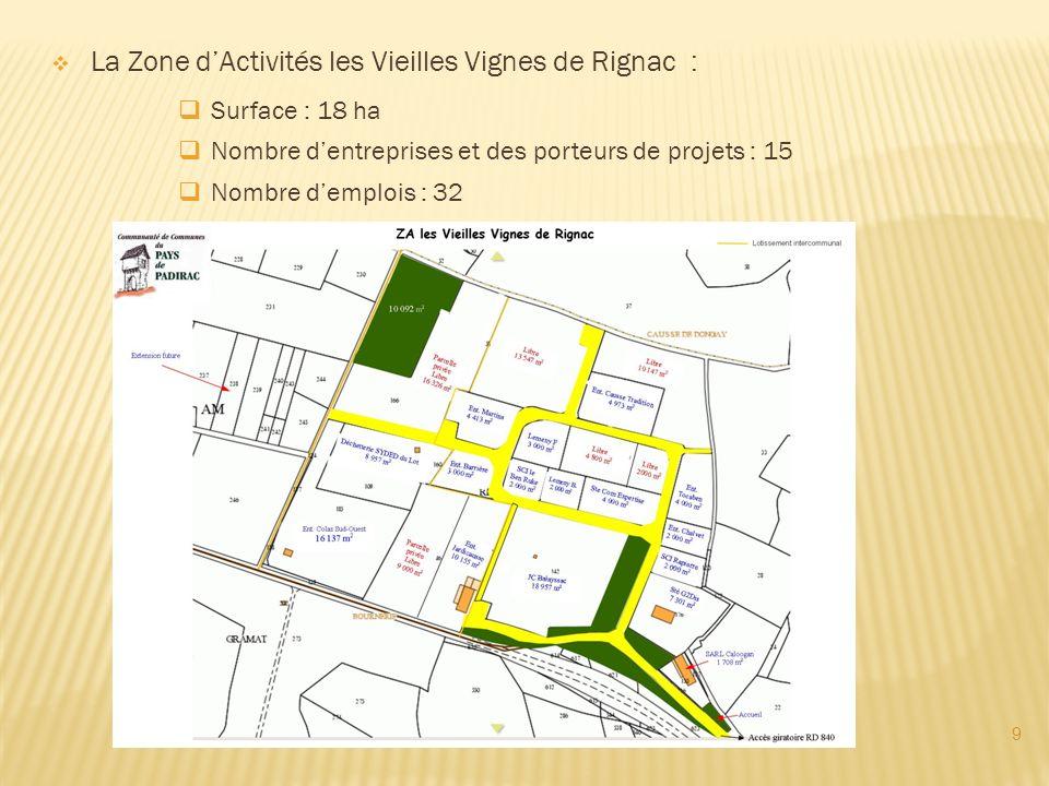 9 La Zone dActivités les Vieilles Vignes de Rignac : Surface : 18 ha Nombre dentreprises et des porteurs de projets : 15 Nombre demplois : 32