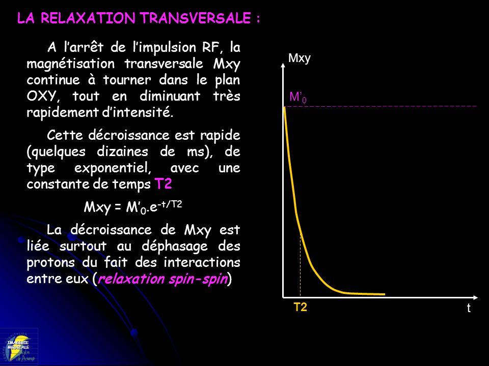 IMAGERIEMEDICALE A larrêt de limpulsion RF, la magnétisation transversale Mxy continue à tourner dans le plan OXY, tout en diminuant très rapidement d