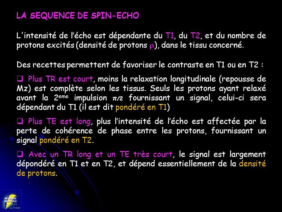 IMAGERIEMEDICALE LA SEQUENCE DE SPIN-ECHO L'intensité de lécho est dépendante du T1, du T2, et du nombre de protons excités (densité de protons ), dan
