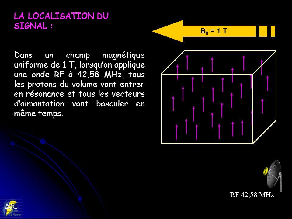 IMAGERIEMEDICALE B 0 = 1 T RF 42,58 MHz LA LOCALISATION DU SIGNAL : Dans un champ magnétique uniforme de 1 T, lorsquon applique une onde RF à 42,58 MH
