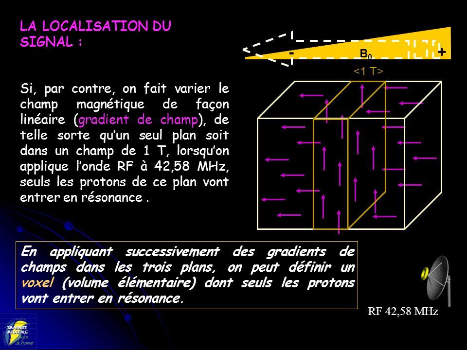 IMAGERIEMEDICALE - B 0 + RF 42,58 MHz LA LOCALISATION DU SIGNAL : Si, par contre, on fait varier le champ magnétique de façon linéaire (gradient de ch