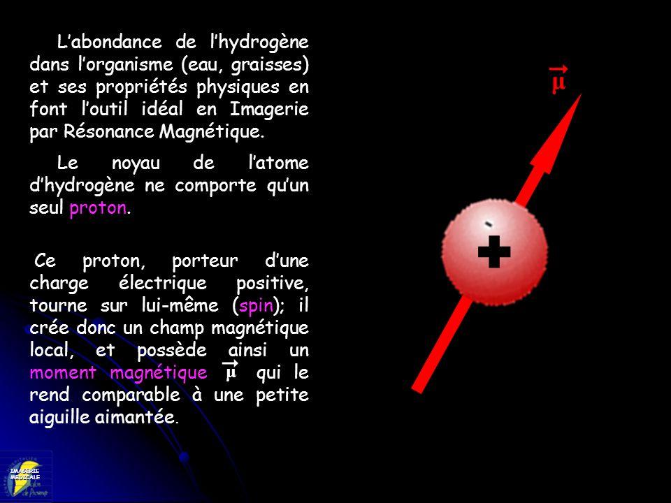 IMAGERIEMEDICALE - B 0 + RF 42,58 MHz LA LOCALISATION DU SIGNAL : Si, par contre, on fait varier le champ magnétique de façon linéaire (gradient de champ), de telle sorte quun seul plan soit dans un champ de 1 T, lorsquon applique londe RF à 42,58 MHz, seuls les protons de ce plan vont entrer en résonance.
