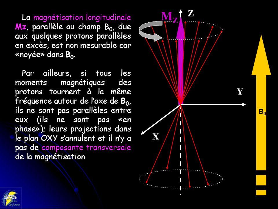 IMAGERIEMEDICALE X Y Z MZMZ La magnétisation longitudinale Mz, parallèle au champ B 0, due aux quelques protons parallèles en excès, est non mesurable