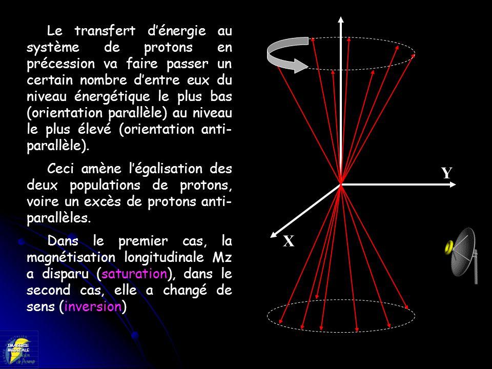 IMAGERIEMEDICALE X Y On observe également une augmentation de lamplitude du mouvement de précession, dont limportance varie avec la durée de limpulsion RF, et surtout une mise en phase des protons.