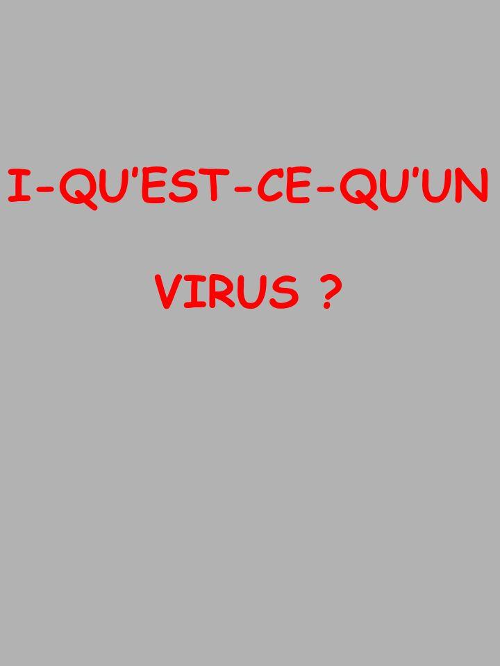 I-QUEST-CE-QUUN VIRUS ?