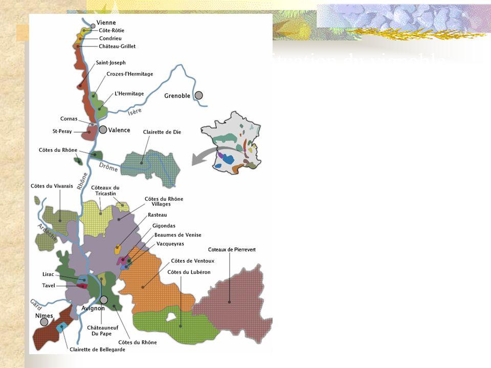3 - Les Côtes du Rhône méridionales REGION ENTRE VALENCE ET AVIGNON BENEFICIE D UN CLIMAT MEDITERRANEEN PEU DE MONOCEPAGE. CHAQUE AOC ADMET UNE DIZAIN