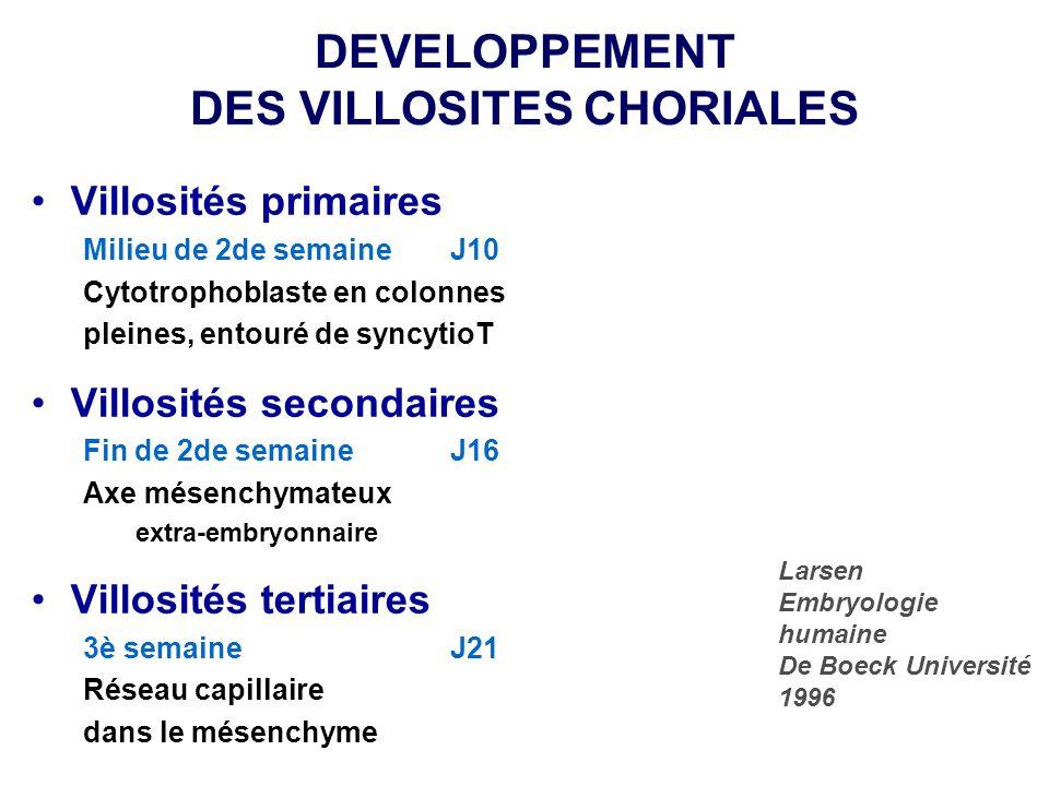 DEVELOPPEMENT DES VILLOSITES CHORIALES Villosités primaires Milieu de 2de semaineJ10 Cytotrophoblaste en colonnes pleines, entouré de syncytioT Villos