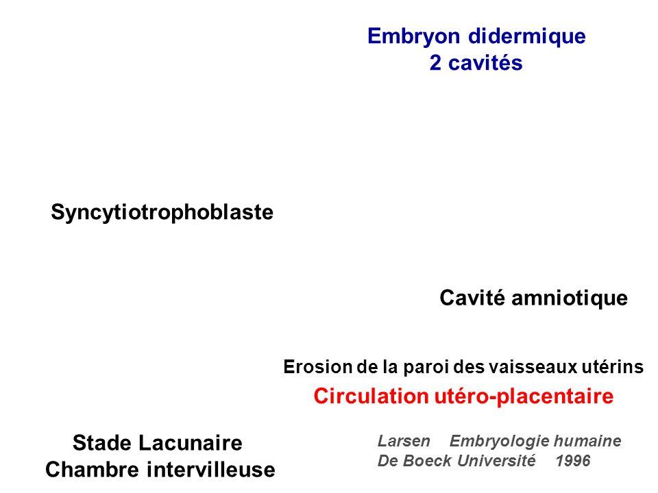 DIFFERENCIATION DU TROPHOBLASTE CYTOTROPHOBLASTE –Interne –Prolifération SYNCYTIOTROPHOBLASTE –Externe –Fusion du cytotrophoblaste –Directement au contact de lendomètre –Vacuoles qui fusionnent : lacunes trophoblastiques chambre intervilleuse : sang maternel –Capacités enzymatiques : métalloprotéinases Dégradation de la matrice extra-cellulaire et dAg HLA-G –Sécrétion de lhCG Corps jaune progestatif corps jaune gestatif