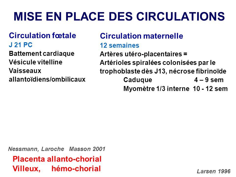 MISE EN PLACE DES CIRCULATIONS Circulation fœtale J 21 PC Battement cardiaque Vésicule vitelline Vaisseaux allantoïdiens/ombilicaux Circulation matern