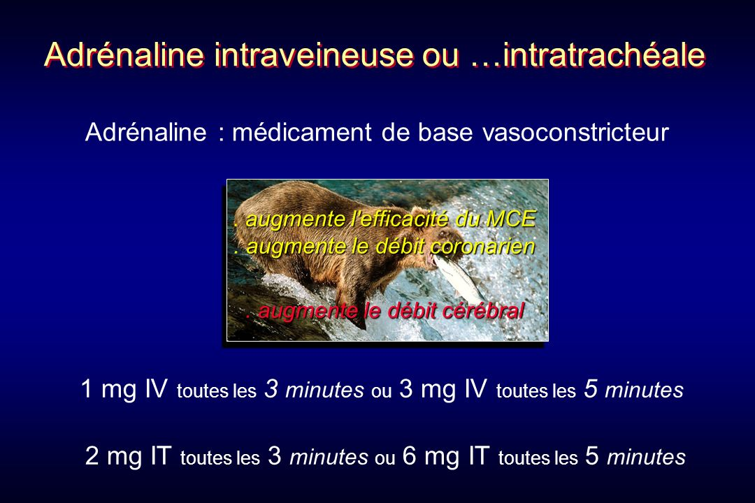 1 mg IV toutes les 3 minutes ou 3 mg IV toutes les 5 minutes Adrénaline intraveineuse ou …intratrachéale Adrénaline : médicament de base vasoconstrict