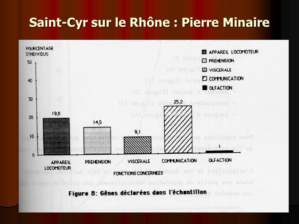 Saint-Cyr sur le Rhône : Pierre Minaire